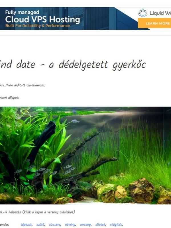 Aquascaping.ME